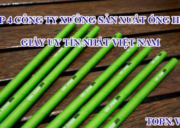 Top 4 công ty xưởng sản xuất ống hút giấy Uy tín Nhất Việt Nam