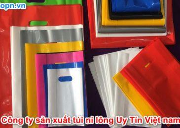 Top 8 công ty sản xuất túi ni lông Nổi Tiếng Uy Tín Nhất Việt nam